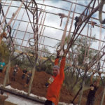 ocr-over-40_rugged-maniac_the-ringer
